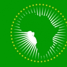 25th Heads of State Summit of the African Union