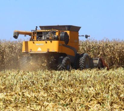 Megaprojectos agrícolas violam Lei da Terra